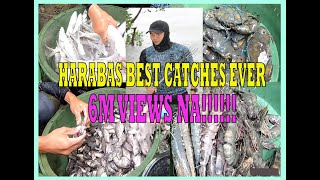 HARABAS Best Catches Ever- REACTION VIDEO -HARABAS -BestCatch -BuhayProbinsiya -BuhayDagat